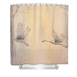 Misty Flight Shower Curtain