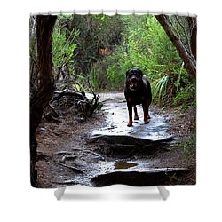 Misty I Will Always Remember Your Smile Shower Curtain