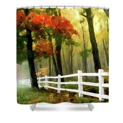 Shower Curtain featuring the painting Misty In The Dell P D P by David Dehner