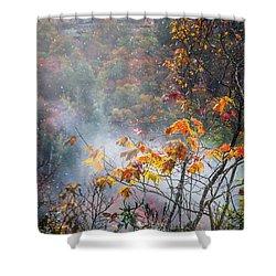Misty Maple Shower Curtain by Diana Boyd