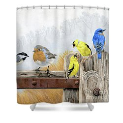 Misty Morning Meadow Shower Curtain