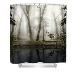 Misty Morning Reflections Shower Curtain by Diane Schuster