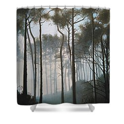 Misty Morning Walk Shower Curtain