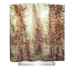 Misty Morning Winter Forest  Shower Curtain