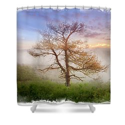 Misty Mountain Shower Curtain by Debra and Dave Vanderlaan