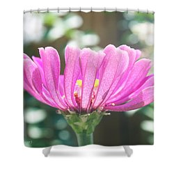 Misty Purple 3 Shower Curtain by Susan Vineyard