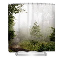Misty Road At Forest Edge, Pocono Mountains, Pennsylvania Shower Curtain