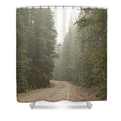 Shower Curtain featuring the photograph Misty Road by James BO Insogna