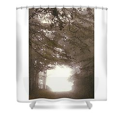Shower Curtain featuring the digital art Misty Road by Julian Perry