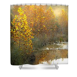 Misty Sunrise At Lost Maples State Park Shower Curtain