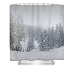 Misty Winter Panorama Shower Curtain