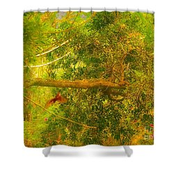Misty Yellow Hue- Ringed Kingfisher In Flight Shower Curtain