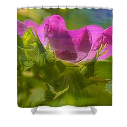 Shower Curtain featuring the photograph mix by Leif Sohlman