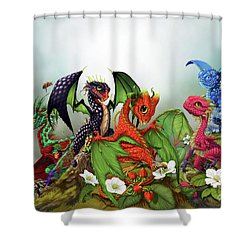 Mixed Berries Dragons Shower Curtain