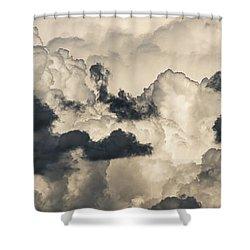 Mixed Bunch Shower Curtain