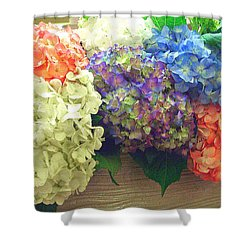 Shower Curtain featuring the photograph Mixed Hydrangea by Merton Allen