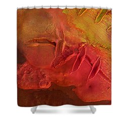 Mixed Media 06 By Rafi Talby Shower Curtain by Rafi Talby