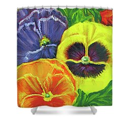 Mixed Pansy  Shower Curtain