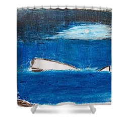 Moby Dick Shower Curtain