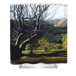 Moel Famau From Loggerheads Shower Curtain by Harry Robertson