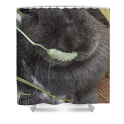 Mogmog Shower Curtain by Nao Yos