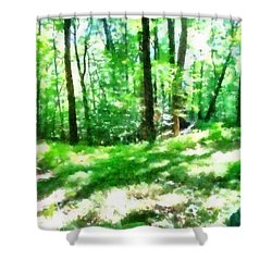 Shower Curtain featuring the photograph Mohegan Lake Forever Green by Derek Gedney