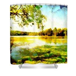 Shower Curtain featuring the painting Mohegan Lake Hidden Oasis by Derek Gedney