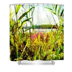Shower Curtain featuring the painting Mohegan Lake In The Brush by Derek Gedney