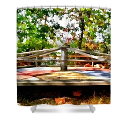 Shower Curtain featuring the painting Mohegan Lake Merry-go-round by Derek Gedney