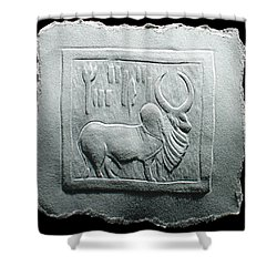 Mohenjodaro Seal Relief Drawing Shower Curtain by Suhas Tavkar