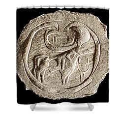 Mohenjodaro Seal Shower Curtain