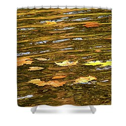 Mohican River Leaves Shower Curtain by Robert Clayton