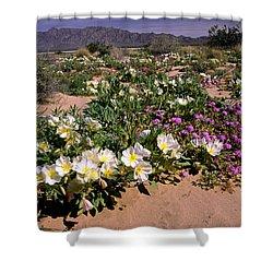 Mojave Desert In California Shower Curtain