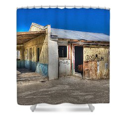 Mojave Times Shower Curtain by Richard J Cassato