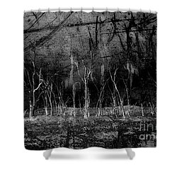Shower Curtain featuring the photograph Mokoan by Linda Lees
