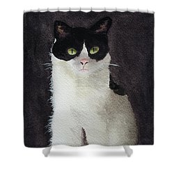 Mollee Shower Curtain