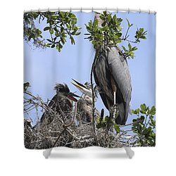 Mom And Babies Shower Curtain