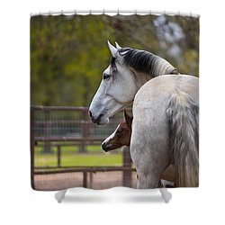 Shower Curtain featuring the photograph Mom And Baby by Sharon Jones