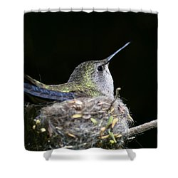 Mom Shower Curtain by Mike Herdering