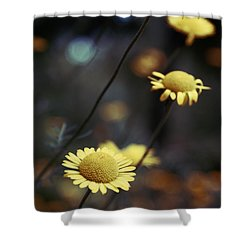 Momentum Shower Curtain by Aimelle
