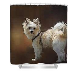 Mimo Shower Curtain