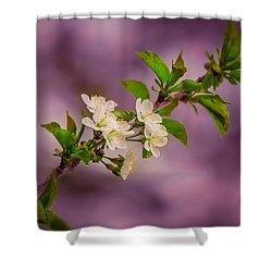 Mon Cherry Shower Curtain by Bulik Elena