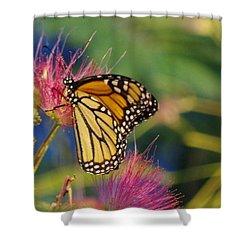 Monarch 2 Shower Curtain