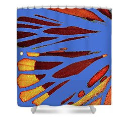 Monarch Abstract Blue Shower Curtain