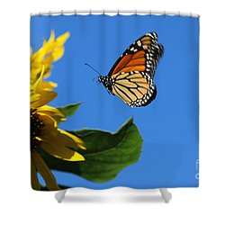 Monarch And Blue Sky  Shower Curtain by Yumi Johnson