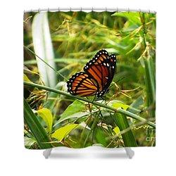 Monarch Shower Curtain by Audrey Van Tassell