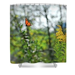 Shower Curtain featuring the photograph Monarch Butterfly Flyaway by Kerri Farley