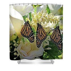 Monarch Butterfly Garden  Shower Curtain