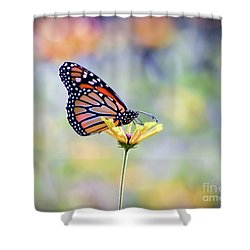 Shower Curtain featuring the photograph Monarch Butterfly -  In The Garden by Kerri Farley
