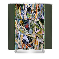 Monarch Butterfly Life Cycle Shower Curtain